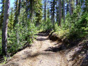 A popular ATV trail!